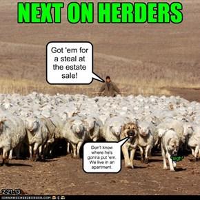 NEXT ON HERDERS