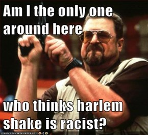 Am I the only one around here  who thinks harlem shake is racist?