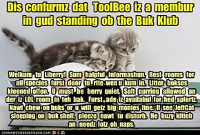 Offishul JeffCatsBookClub Memburship Kard for ToolBee