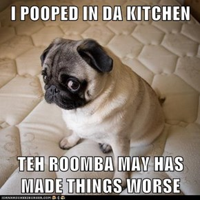 I POOPED IN DA KITCHEN  TEH ROOMBA MAY HAS MADE THINGS WORSE