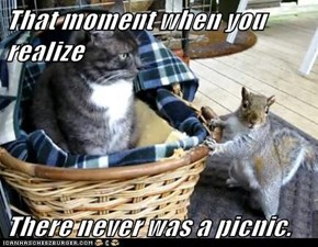 That moment when you realize  There never was a picnic.