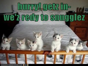 hurry! getz in-         we'z redy to snugglez