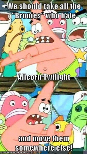 "We should take all the ""Bronies"" who hate Alicorn Twilight and move them somewhere else!"