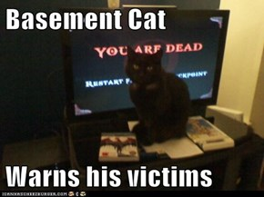 Basement Cat  Warns his victims
