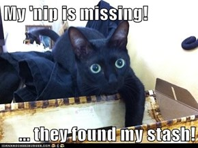 My 'nip is missing!  ... they found my stash!