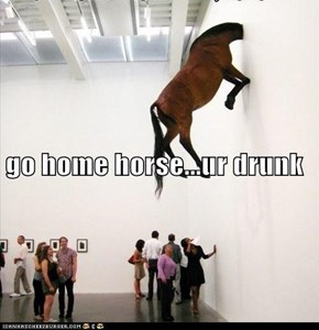go home horse...ur drunk