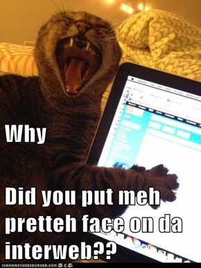 Why Did you put meh pretteh face on da interweb??