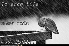 To each life some rain must fall.....