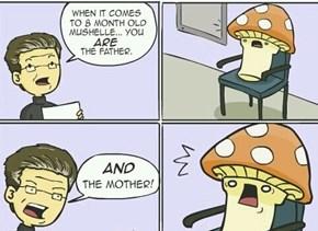 Fungi Problems