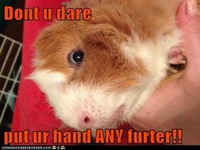 Dont u dare  put ur hand ANY furter!!