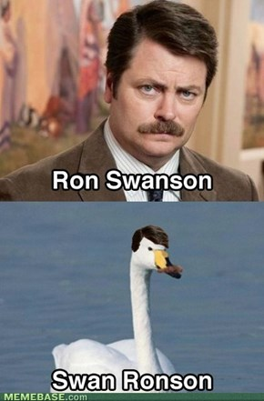 Looking good Ron