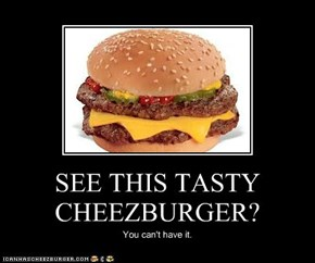 SEE THIS TASTY CHEEZBURGER?