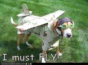 I must FLY!