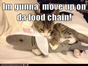 Im gunna  move up on da food chain!