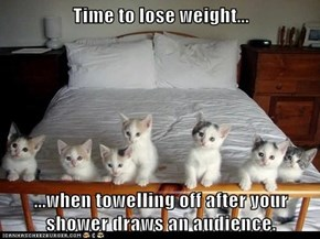 Time to lose weight...  ...when towelling off after your shower draws an audience.