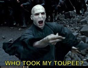 WHO TOOK MY TOUPEE?