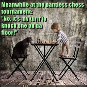 "Meanwhile at the pantless chess tournament:                                                      ""No, it's my turn to                                                       knock one on da                                                       floor!"""