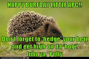 HAPPY BURFDAY LITTLE APC!!  Don't forget to 'hedge' your betz and eet high on da 'hog'!        lubz ya,  Polly