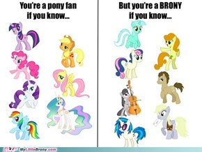 Are u a true brony