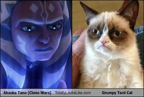 Ahsoka Tano (Clone Wars) Totally Looks Like Grumpy Tard Cat