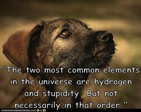 """The two most common elements in the universe are hydrogen and stupidity. But not necessarily in that order."""