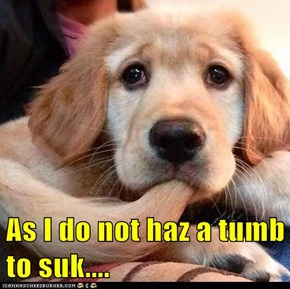 As I do not haz a tumb to suk....