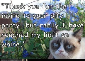 """Thank you for the invite to your pity party, but really I have reached my limit on whine."""