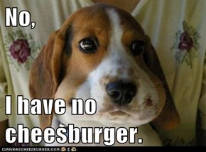 No,   I have no cheesburger.