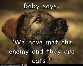 "Baby says:  ""We have met the enemy and they are cats."""
