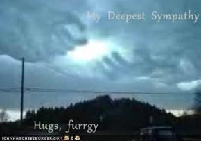 My  Deepest  Sympathy            Hugs,  furrgy