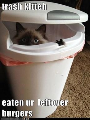 trash kitteh  eaten ur  leftover burgers