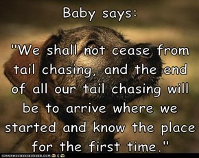 "Baby says:  ""We shall not cease from tail chasing, and the end of all our tail chasing will be to arrive where we started and know the place for the first time."""