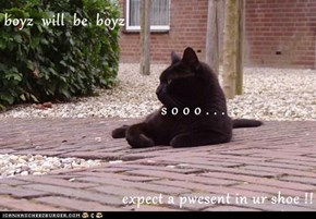 boyz  will  be  boyz                  s o o o . . .  expect a pwesent in ur shoe !!