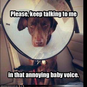 Please, keep talking to me