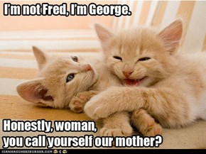 He's Fred!