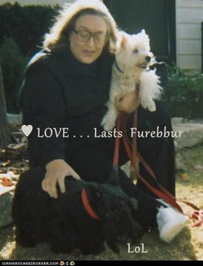 ♥ LOVE . . . Lasts  Furebbur                     LoL