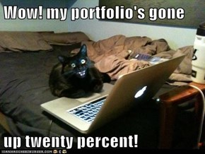 Wow! my portfolio's gone  up twenty percent!