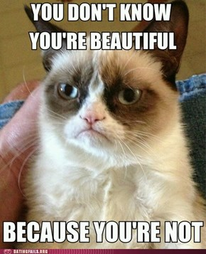 Grumpycat Does Not See Your Inner Beauty