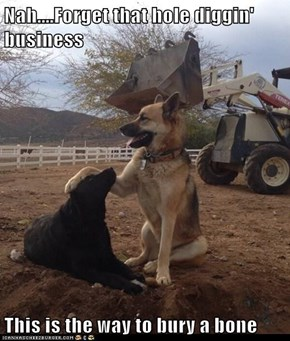 Nah....Forget that hole diggin' business  This is the way to bury a bone