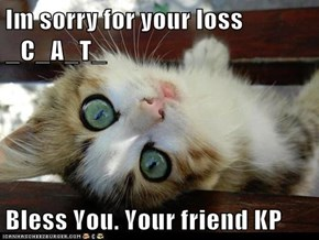 Im sorry for your loss _C_A_T_  Bless You. Your friend KP