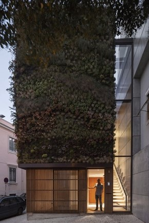 This Home in Portugal Has a Living Wall