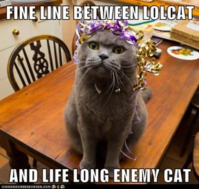 FINE LINE BETWEEN LOLCAT  AND LIFE LONG ENEMY CAT