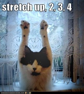 stretch up, 2, 3, 4