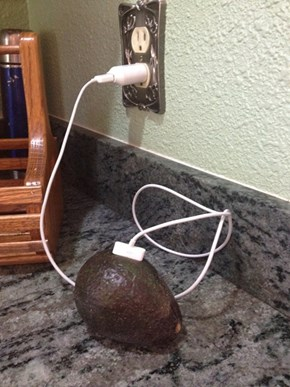 Does Your Avocado Have a Good Data Plan?