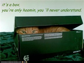 it's a box. you're only hoomin, you 'll never understand.