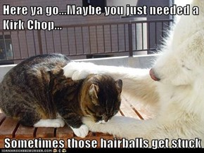 Here ya go...Maybe you just needed a Kirk Chop...  Sometimes those hairballs get stuck