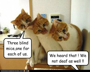 Three blind mice,one for each of us.