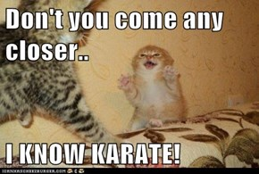Don't you come any closer..  I KNOW KARATE!