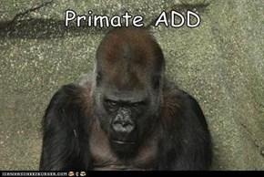 Primate ADD