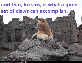 and that, kittens, is what a good set of claws can accomplish.